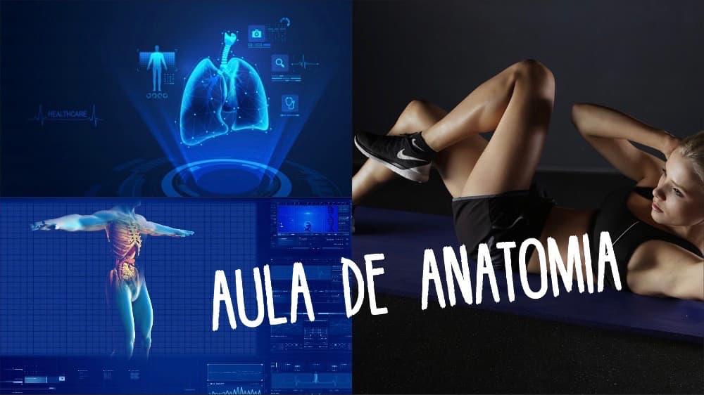 Aulão de Anatomia 18 de Maio 2019