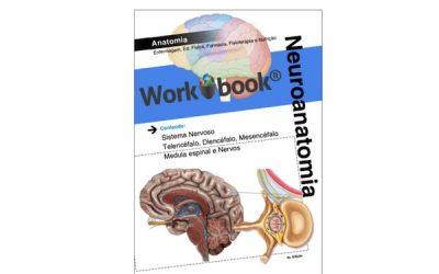 Workbook # 02 – Neuroanatomia