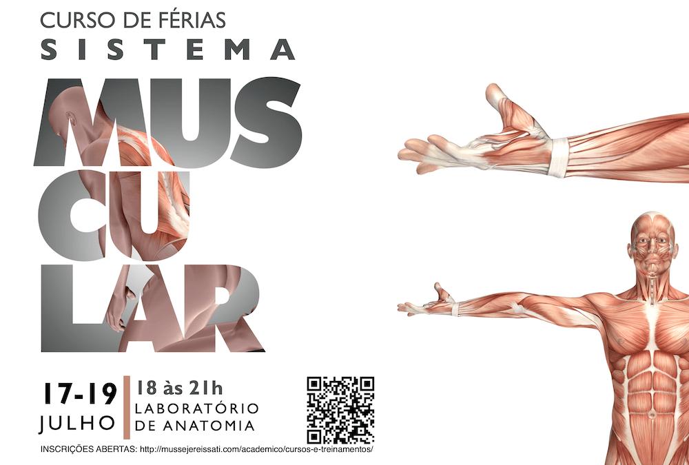 Curso Anatomia do Sistema Muscular 2019.2