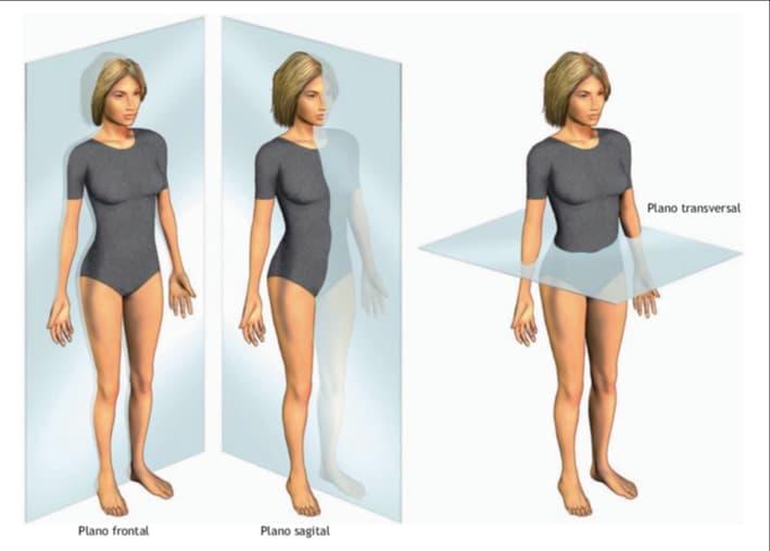 Noções de Anatomia e Sinais Vitais