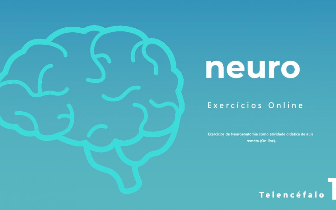 Exercício #1 –  Telencéfalo